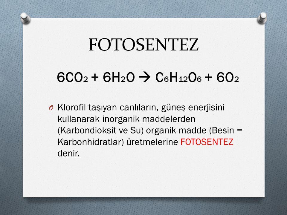 6CO 2 + 6H 2 O  C 6 H 12 O 6 + 6O 2 O Klorofil taşıyan canlıların, güneş enerjisini kullanarak inorganik maddelerden (Karbondioksit ve Su) organik madde (Besin = Karbonhidratlar) üretmelerine FOTOSENTEZ denir.