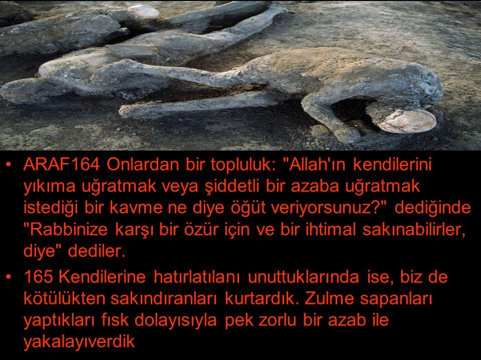 •ARAF164 Onlardan bir topluluk: