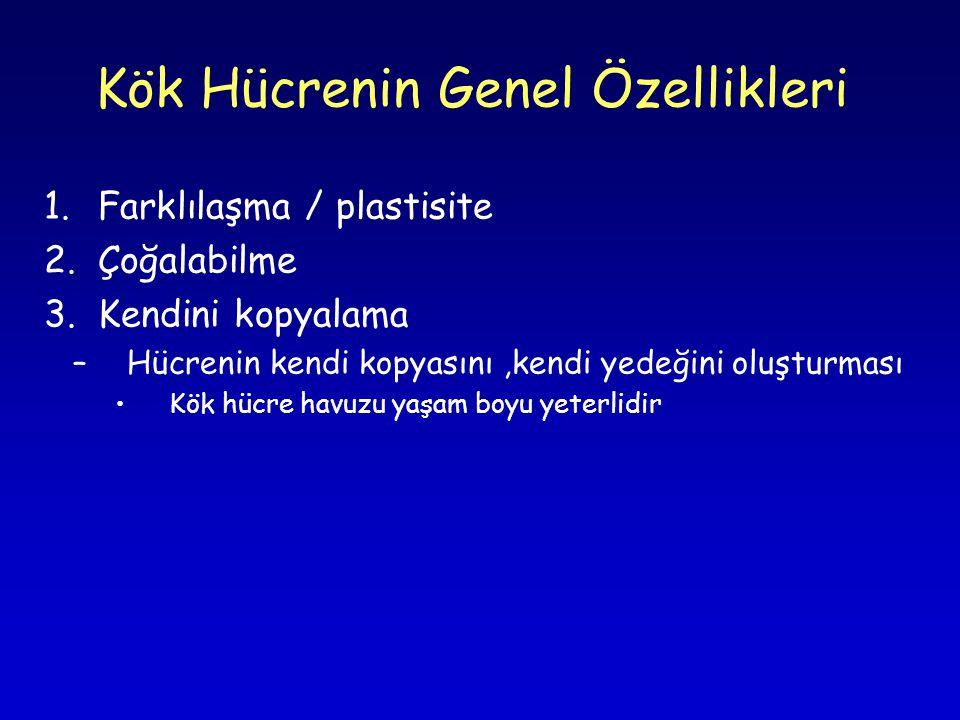 Kök Hücrenin Genel Özellikleri 1.Farklılaşma / plastisite 2.Çoğalabilme 3.Kendini kopyalama –Hücrenin kendi kopyasını,kendi yedeğini oluşturması •Kök hücre havuzu yaşam boyu yeterlidir
