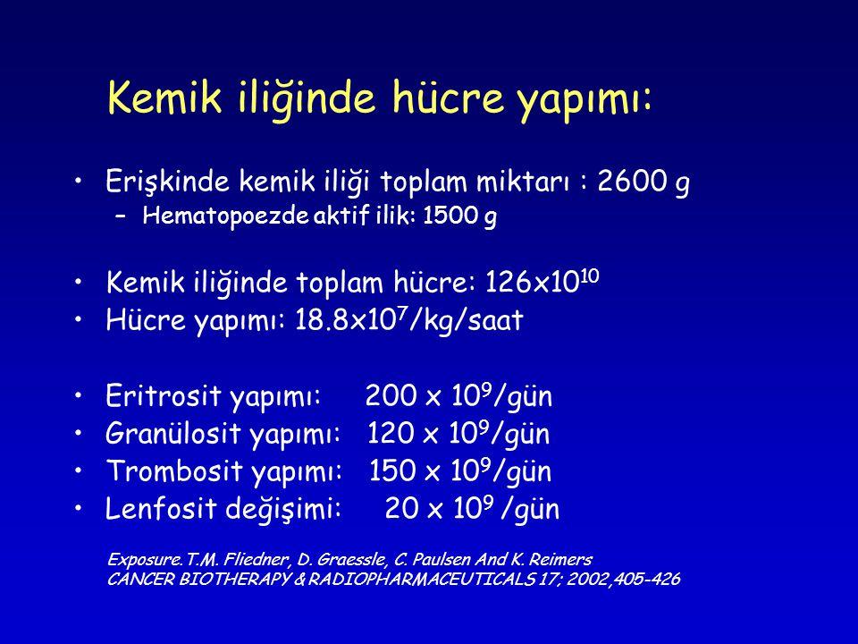 Kemik iliğinde hücre yapımı: •Erişkinde kemik iliği toplam miktarı : 2600 g –Hematopoezde aktif ilik: 1500 g •Kemik iliğinde toplam hücre: 126x10 10 •Hücre yapımı: 18.8x10 7 /kg/saat •Eritrosit yapımı: 200 x 10 9 /gün •Granülosit yapımı: 120 x 10 9 /gün •Trombosit yapımı: 150 x 10 9 /gün •Lenfosit değişimi: 20 x 10 9 /gün Exposure.T.M.