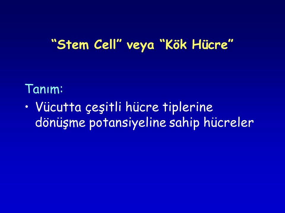 Stem Cell veya Kök Hücre Tanım: •Vücutta çeşitli hücre tiplerine dönüşme potansiyeline sahip hücreler