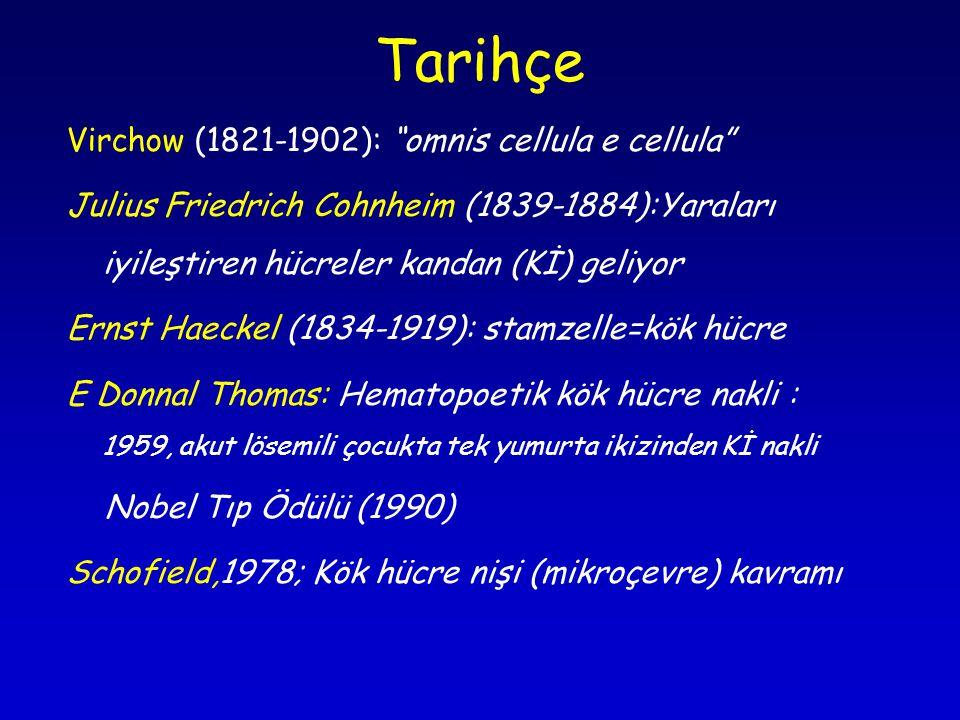 Tarihçe Virchow (1821-1902): omnis cellula e cellula Julius Friedrich Cohnheim (1839-1884):Yaraları iyileştiren hücreler kandan (Kİ) geliyor Ernst Haeckel (1834-1919): stamzelle=kök hücre E Donnal Thomas: Hematopoetik kök hücre nakli : 1959, akut lösemili çocukta tek yumurta ikizinden Kİ nakli Nobel Tıp Ödülü (1990) Schofield,1978; Kök hücre nişi (mikroçevre) kavramı