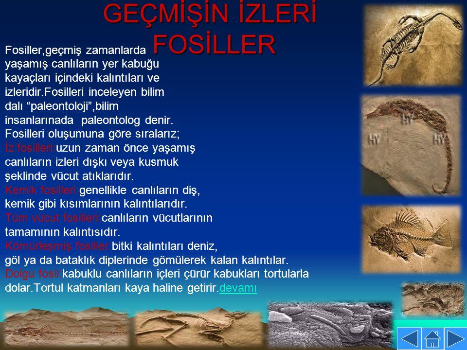 GEÇMİŞİN İZLERİ FOSİLLER Fosiller,geçmiş zamanlarda yaşamış canlıların yer kabuğu kayaçları içindeki kalıntıları ve izleridir.Fosilleri inceleyen bili