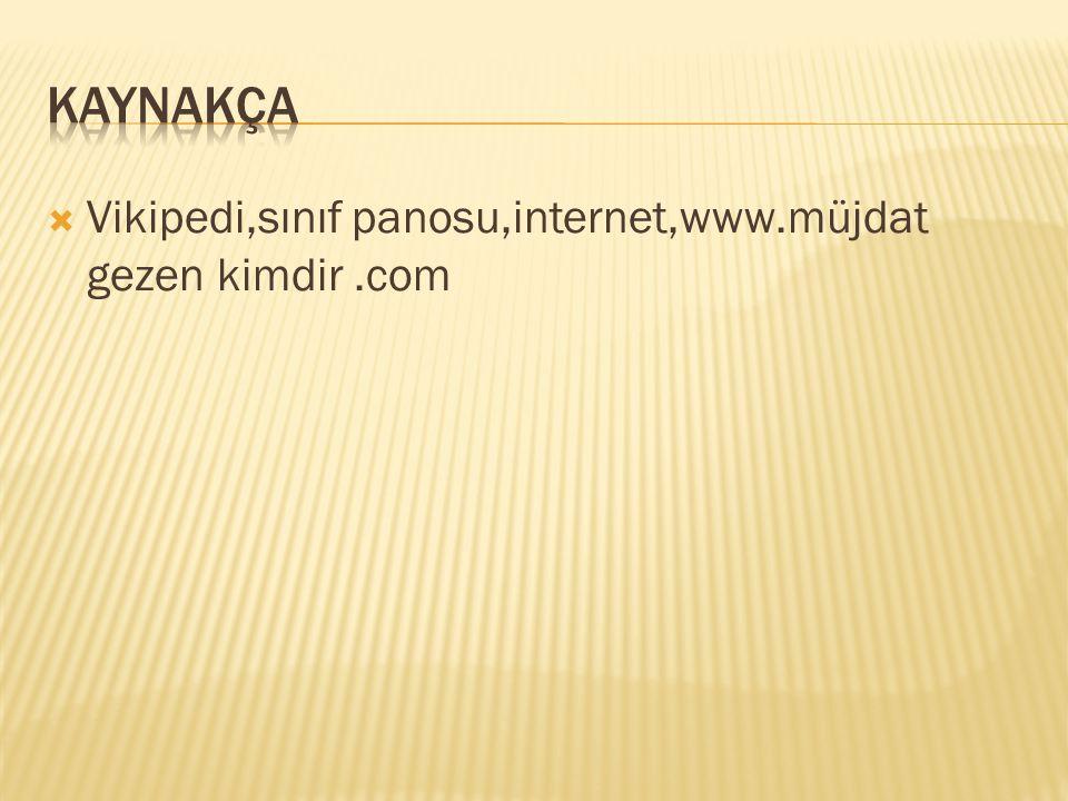  Vikipedi,sınıf panosu,internet,www.müjdat gezen kimdir.com