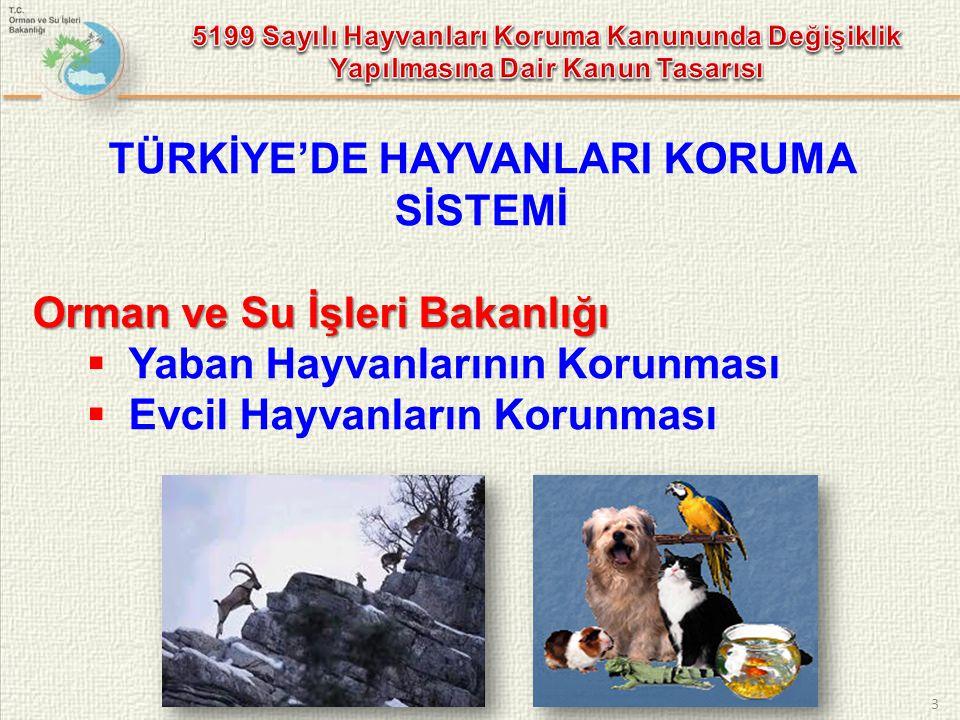 3 TÜRKİYE'DE HAYVANLARI KORUMA SİSTEMİ Orman ve Su İşleri Bakanlığı  Yaban Hayvanlarının Korunması  Evcil Hayvanların Korunması