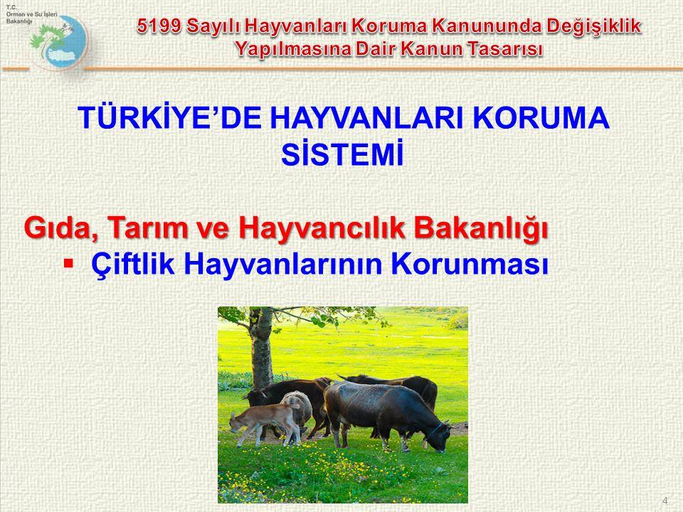 4 TÜRKİYE'DE HAYVANLARI KORUMA SİSTEMİ Gıda, Tarım ve Hayvancılık Bakanlığı  Çiftlik Hayvanlarının Korunması