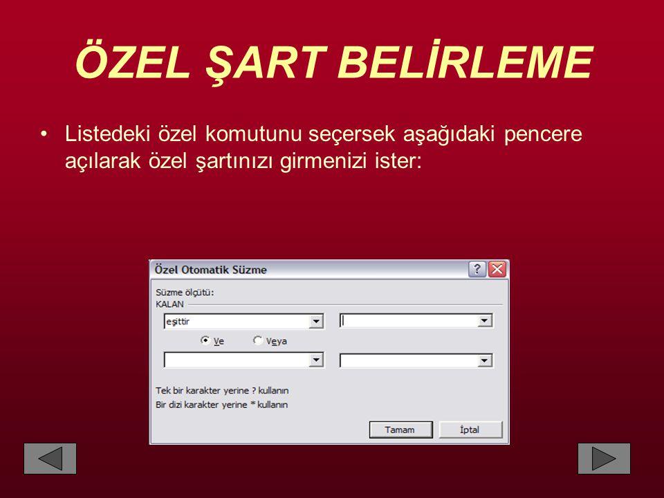ÖZEL ŞART BELİRLEME •Listedeki özel komutunu seçersek aşağıdaki pencere açılarak özel şartınızı girmenizi ister: