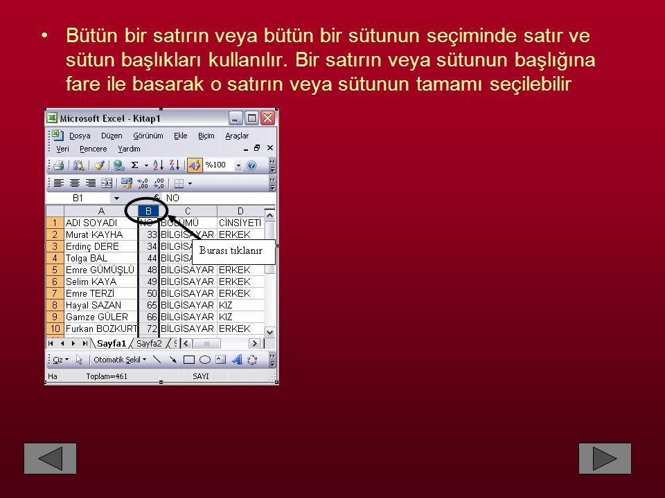 •Biçim – Sayfa menüsündeki Gizle ve Göster seçeneklerini kullanarak sayfaları gizleyebilir ve lazım olduğunda yeniden gösterebiliriz.