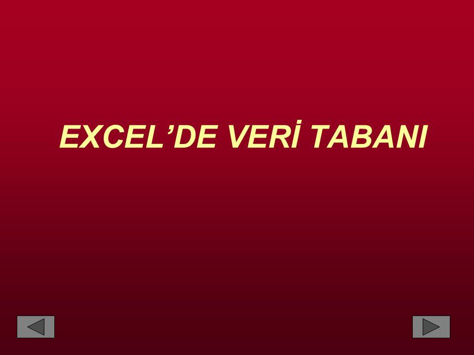 EXCEL'DE VERİ TABANI