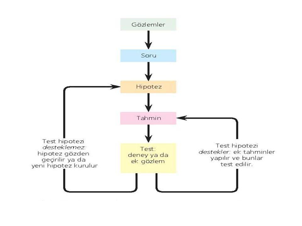 Bilim nasıl çalışır? Gözlem Teori Test edilebilir hipotezler Gözleme dayalı genellemeler