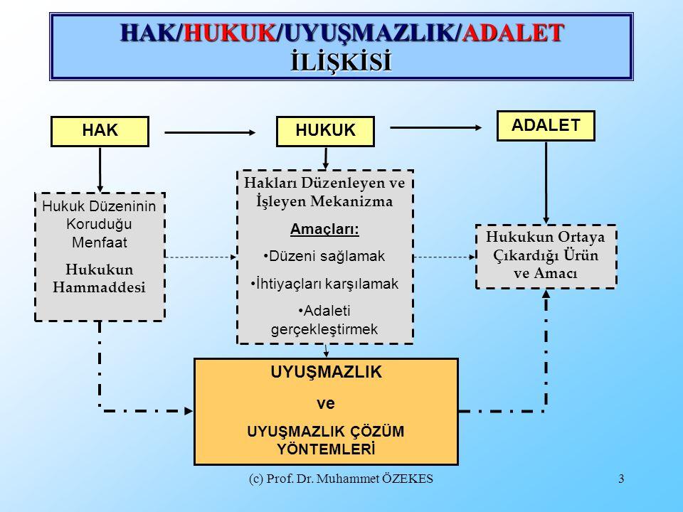 (c) Prof.Dr. Muhammet ÖZEKES14 ARABULUCULUĞA İLİŞKİN ÖNYARGILARIN TEMEL SEBEPLERİ NELERDİR.
