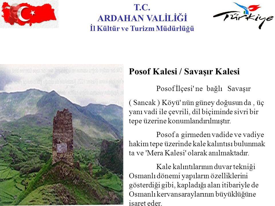 T.C. ARDAHAN VALİLİĞİ İl Kültür ve Turizm Müdürlüğü Posof Kalesi / Savaşır Kalesi Posof İlçesi' ne bağlı Savaşır ( Sancak ) Köyü' nün güney doğusun da