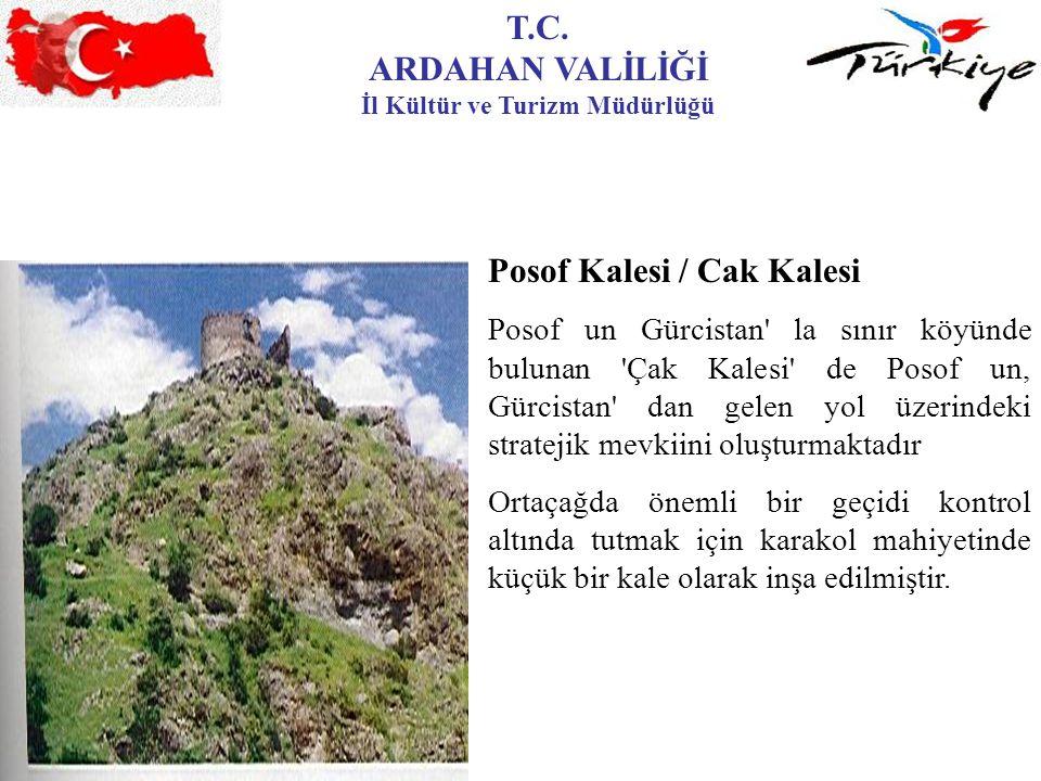 T.C. ARDAHAN VALİLİĞİ İl Kültür ve Turizm Müdürlüğü Posof Kalesi / Cak Kalesi Posof un Gürcistan' la sınır köyünde bulunan 'Çak Kalesi' de Posof un, G