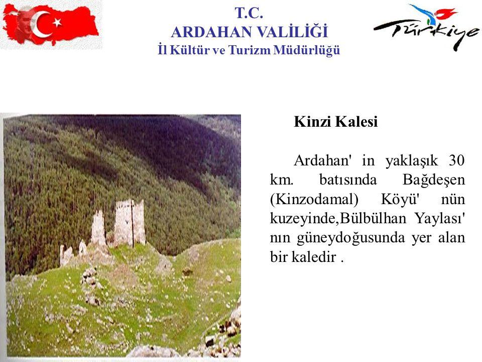 T.C. ARDAHAN VALİLİĞİ İl Kültür ve Turizm Müdürlüğü Kinzi Kalesi Ardahan' in yaklaşık 30 km. batısında Bağdeşen (Kinzodamal) Köyü' nün kuzeyinde,Bülbü