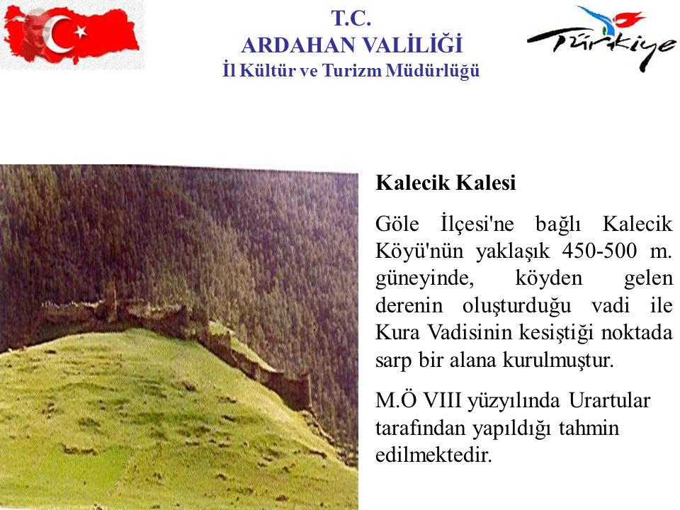 T.C. ARDAHAN VALİLİĞİ İl Kültür ve Turizm Müdürlüğü Kalecik Kalesi Göle İlçesi'ne bağlı Kalecik Köyü'nün yaklaşık 450-500 m. güneyinde, köyden gelen d