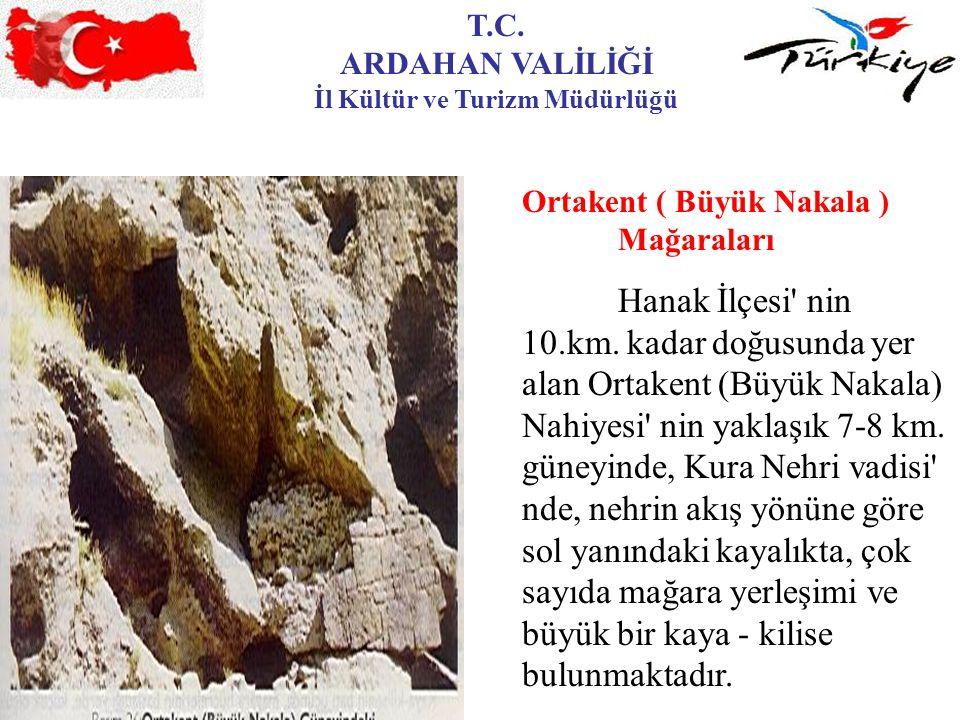 T.C. ARDAHAN VALİLİĞİ İl Kültür ve Turizm Müdürlüğü Ortakent ( Büyük Nakala ) Mağaraları Hanak İlçesi' nin 10.km. kadar doğusunda yer alan Ortakent (B