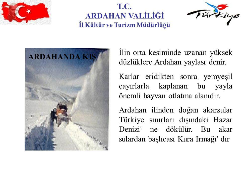 T.C. ARDAHAN VALİLİĞİ İl Kültür ve Turizm Müdürlüğü ARDAHANDA KIŞ İlin orta kesiminde uzanan yüksek düzlüklere Ardahan yaylası denir. Karlar eridikten