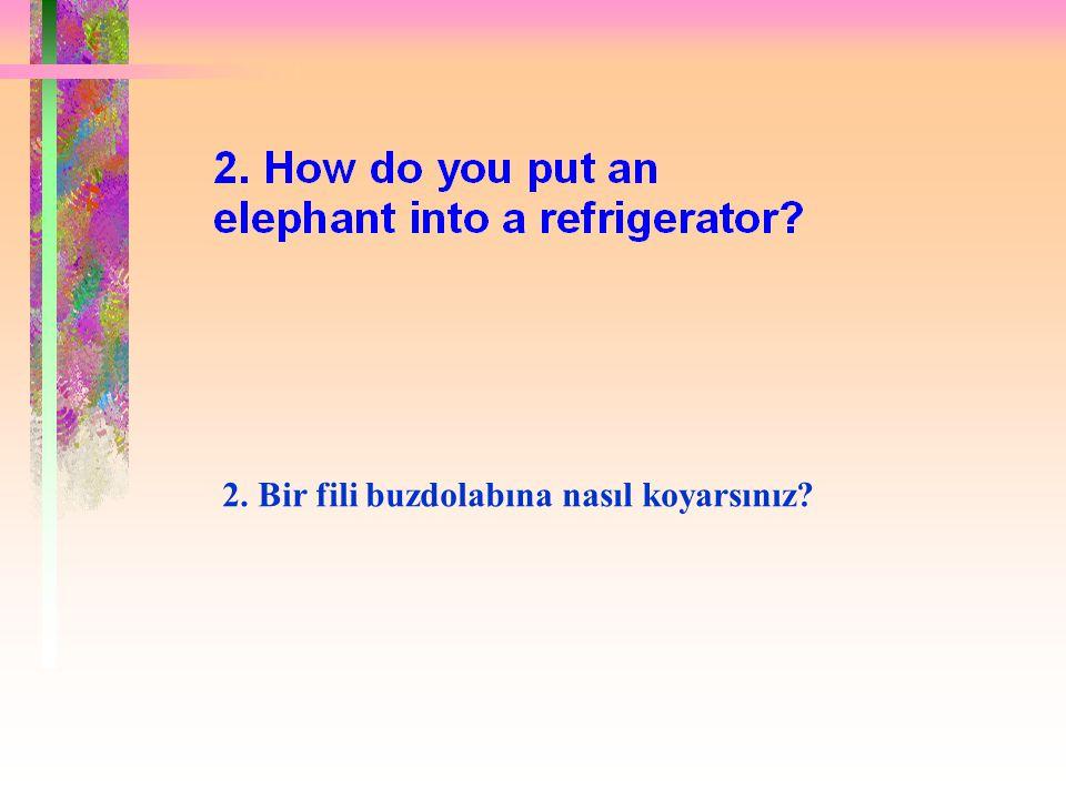 Yanlış cevap: Buzdolabını aç fili içine koy ve kapısını kapat.