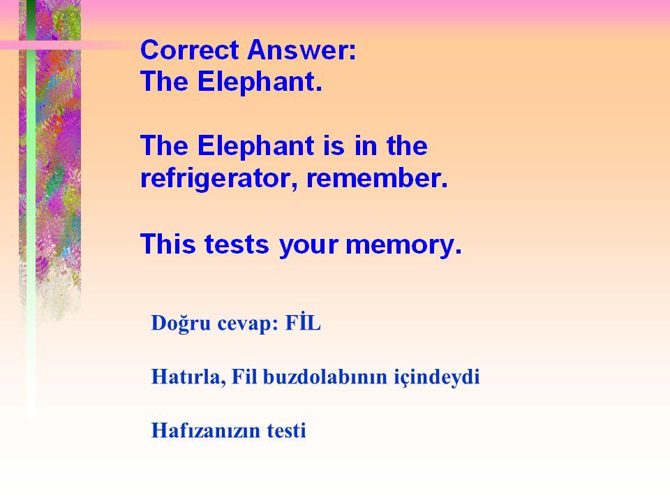 Doğru cevap: FİL Hatırla, Fil buzdolabının içindeydi Hafızanızın testi