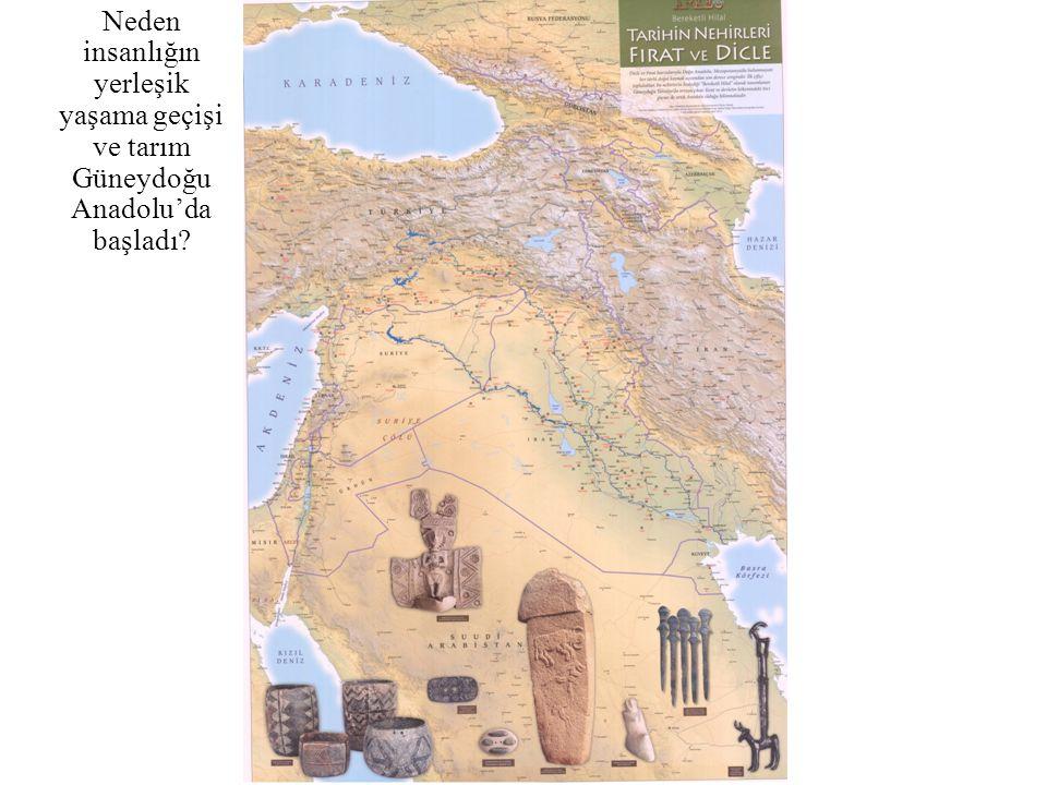Neden insanlığın yerleşik yaşama geçişi ve tarım Güneydoğu Anadolu'da başladı?