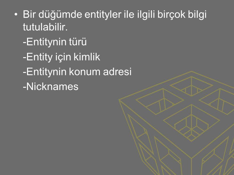 •Bir düğümde entityler ile ilgili birçok bilgi tutulabilir. -Entitynin türü -Entity için kimlik -Entitynin konum adresi -Nicknames