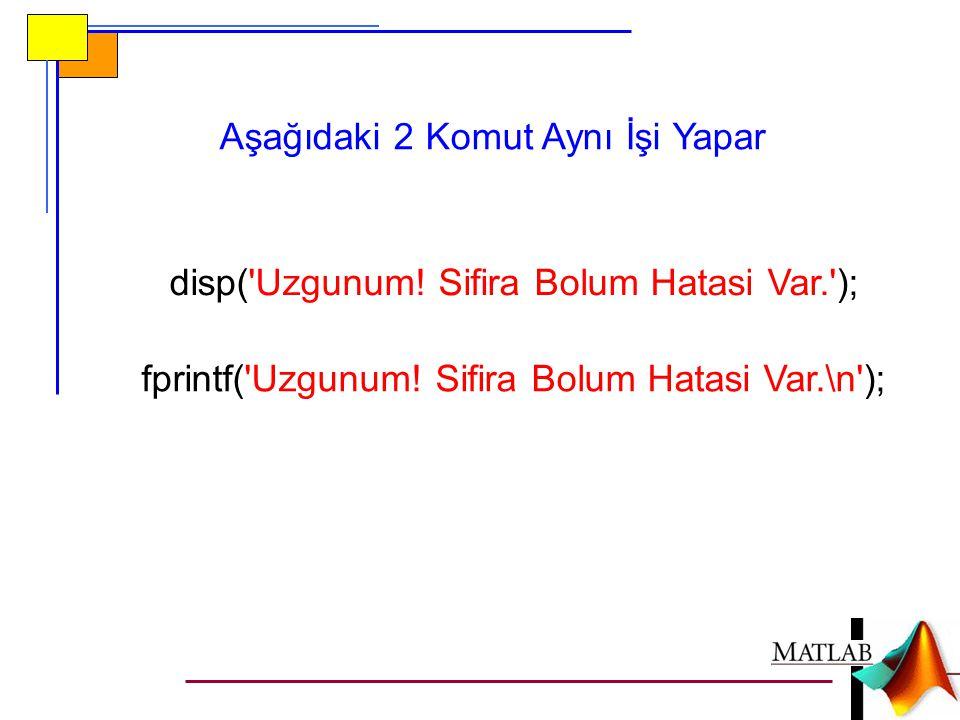disp('Uzgunum! Sifira Bolum Hatasi Var.'); fprintf('Uzgunum! Sifira Bolum Hatasi Var.\n'); Aşağıdaki 2 Komut Aynı İşi Yapar