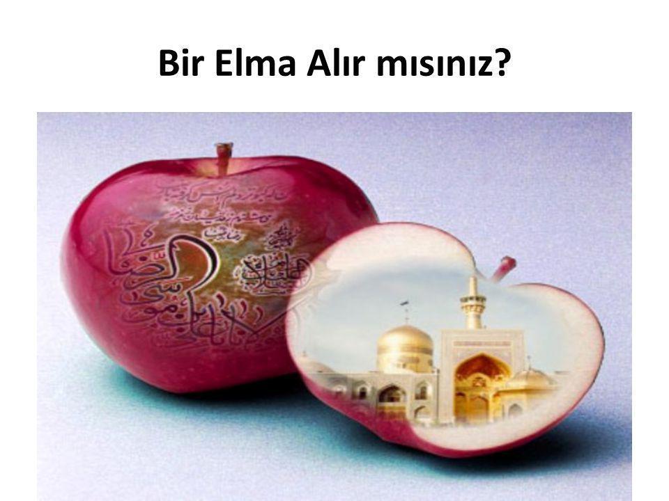 Alma- Olma- Ulma- Ulmo • Dünyada en çok türü olan ağaç elmadır.En çok yetiştirilen ve en çok yenen meyve de odur.