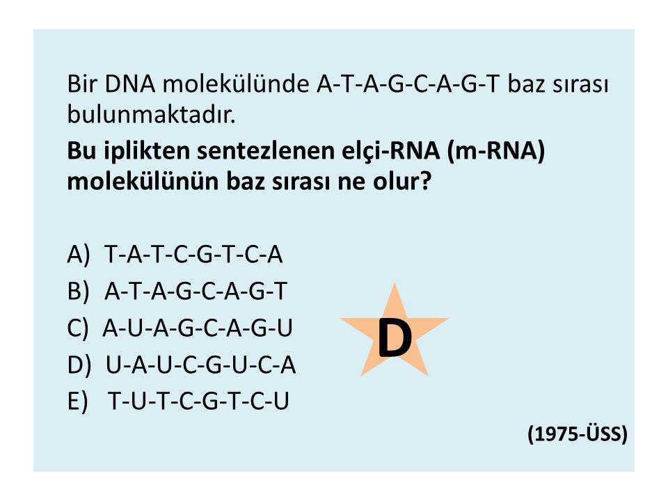 Bir DNA molekülünde A-T-A-G-C-A-G-T baz sırası bulunmaktadır. Bu iplikten sentezlenen elçi-RNA (m-RNA) molekülünün baz sırası ne olur? A)T-A-T-C-G-T-C