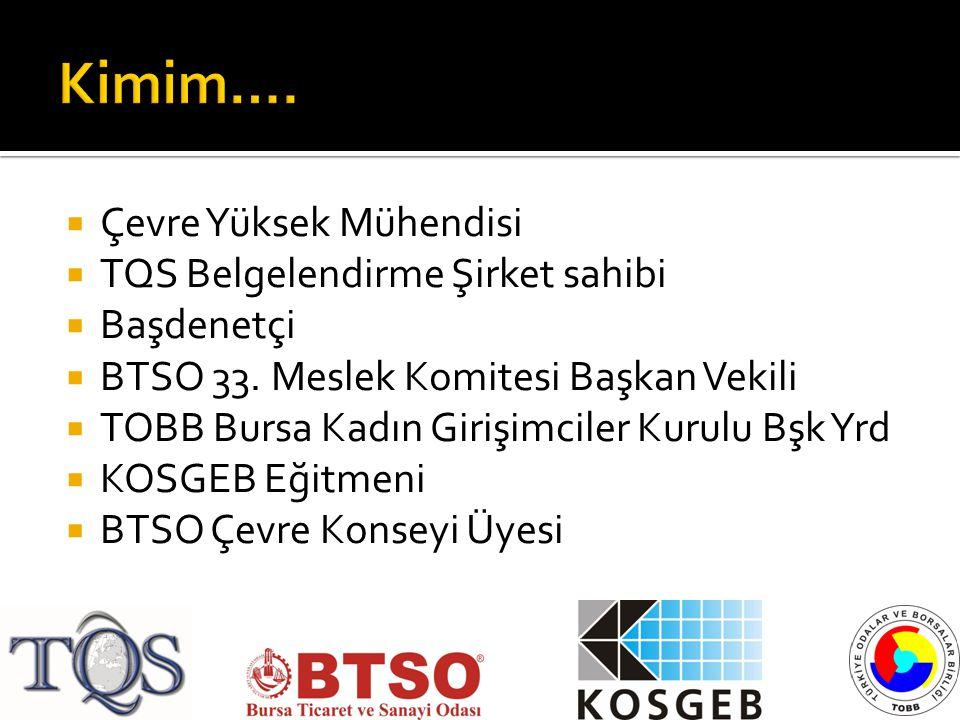  Çevre Yüksek Mühendisi  TQS Belgelendirme Şirket sahibi  Başdenetçi  BTSO 33. Meslek Komitesi Başkan Vekili  TOBB Bursa Kadın Girişimciler Kurul