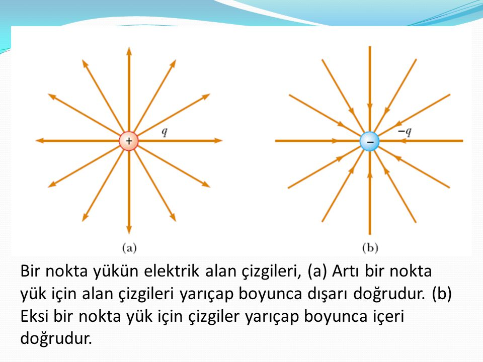 Bir nokta yükün elektrik alan çizgileri, (a) Artı bir nokta yük için alan çizgileri yarıçap boyunca dışarı doğrudur. (b) Eksi bir nokta yük için çizgi
