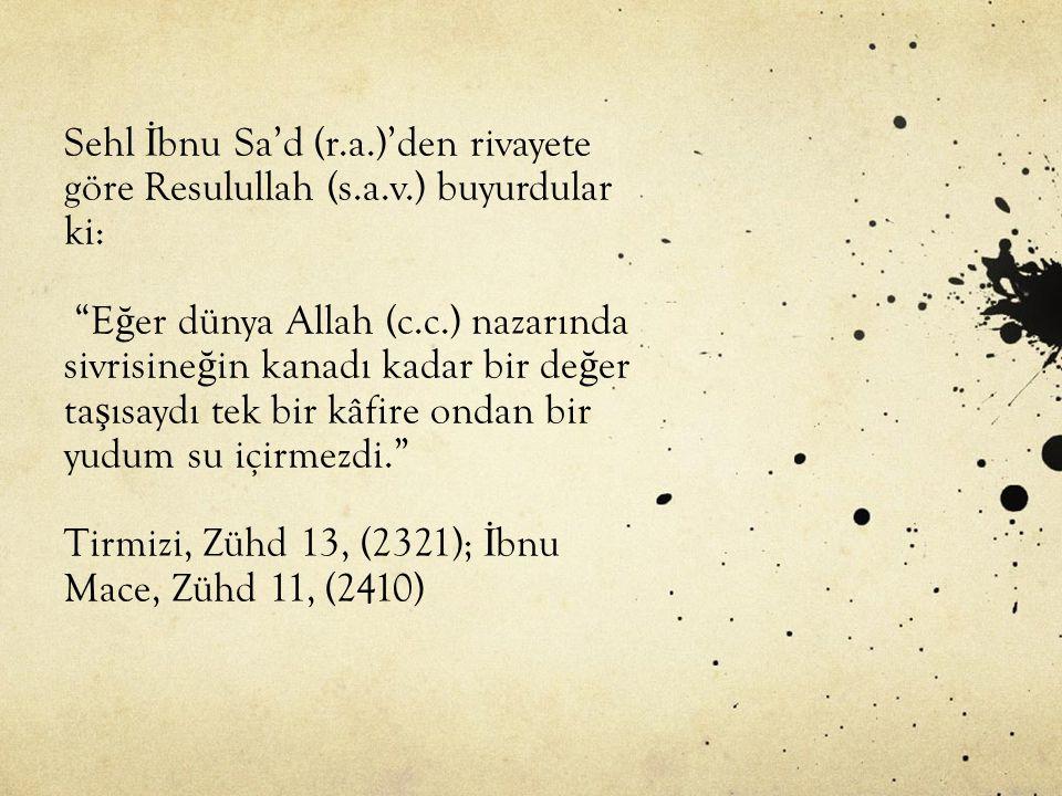 Sehl İ bnu Sa'd (r.a.)'den rivayete göre Resulullah (s.a.v.) buyurdular ki: E ğ er dünya Allah (c.c.) nazarında sivrisine ğ in kanadı kadar bir de ğ er ta ş ısaydı tek bir kâfire ondan bir yudum su içirmezdi. Tirmizi, Zühd 13, (2321); İ bnu Mace, Zühd 11, (2410)
