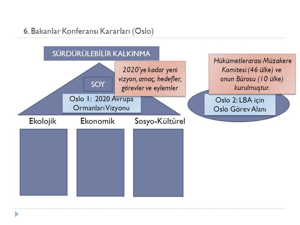 6. Bakanlar Konferansı Kararları (Oslo) Ekolojik Ekonomik Sosyo-Kültürel Oslo 1: 2020 Avrupa Ormanları Vizyonu SOY SÜRDÜRÜLEB İ L İ R KALKINMA Oslo 2: