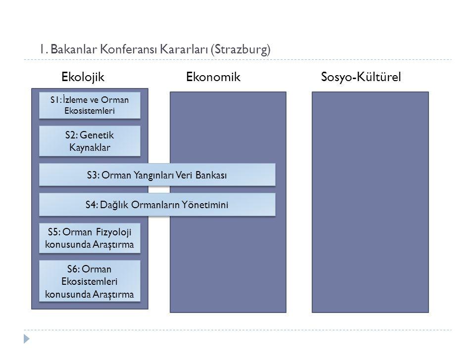 1. Bakanlar Konferansı Kararları (Strazburg) Ekolojik Ekonomik Sosyo-Kültürel S1: İ zleme ve Orman Ekosistemleri S2: Genetik Kaynaklar S3: Orman Yangı