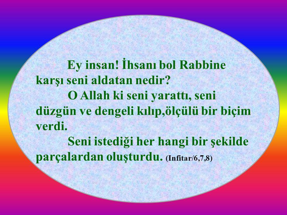 Ey insan! İhsanı bol Rabbine karşı seni aldatan nedir? O Allah ki seni yarattı, seni düzgün ve dengeli kılıp,ölçülü bir biçim verdi. Seni istediği her