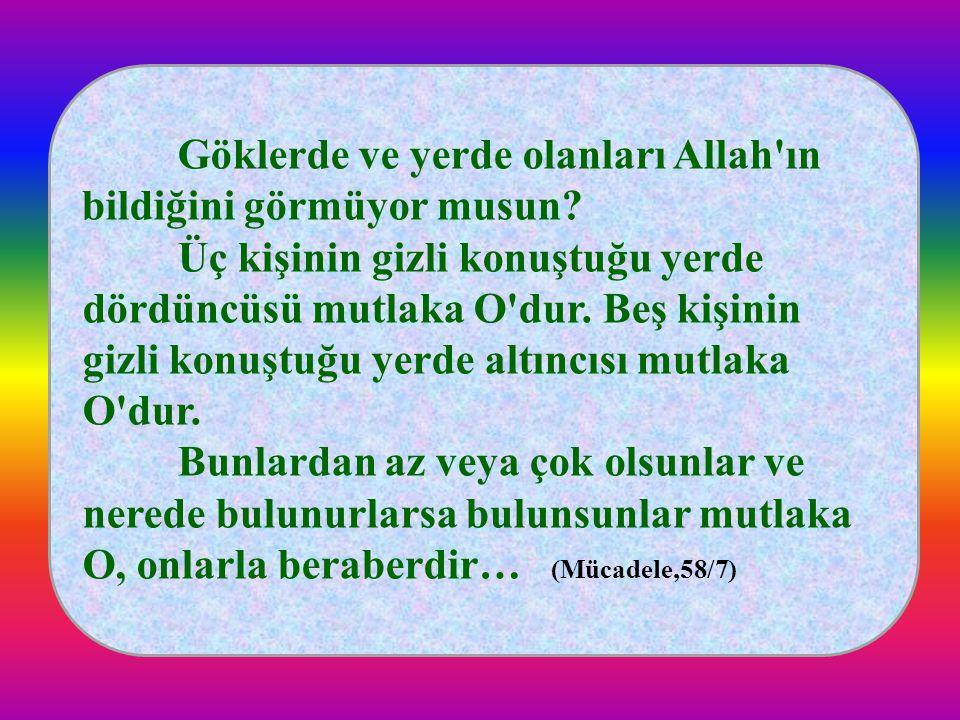 Göklerde ve yerde olanları Allah ın bildiğini görmüyor musun.