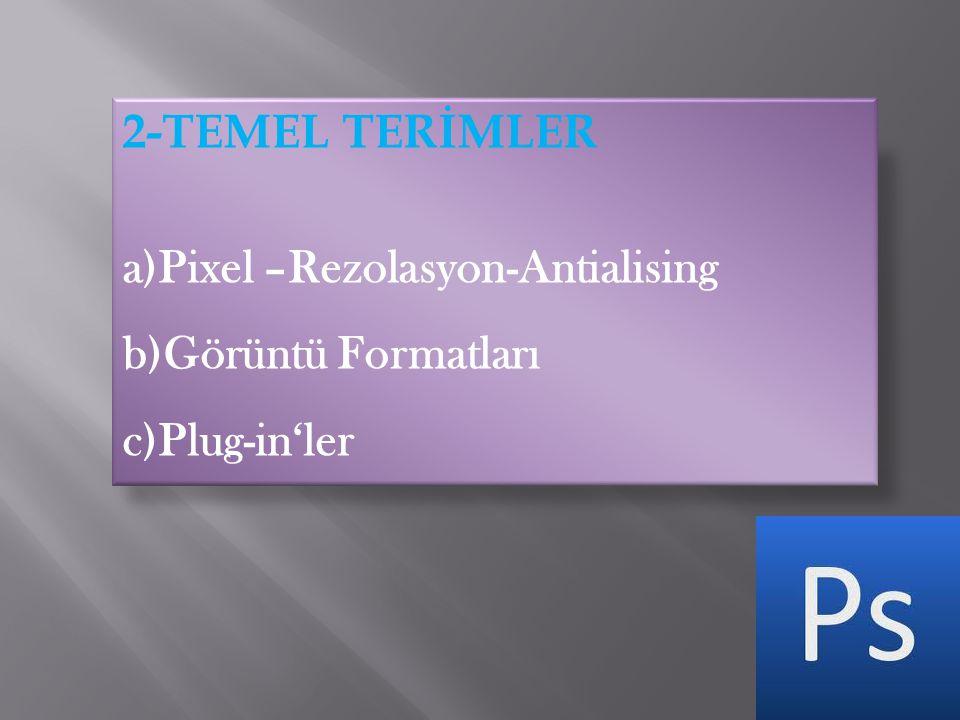 2-TEMEL TERİMLER a)Pixel –Rezolasyon-Antialising b)Görüntü Formatları c)Plug-in'ler