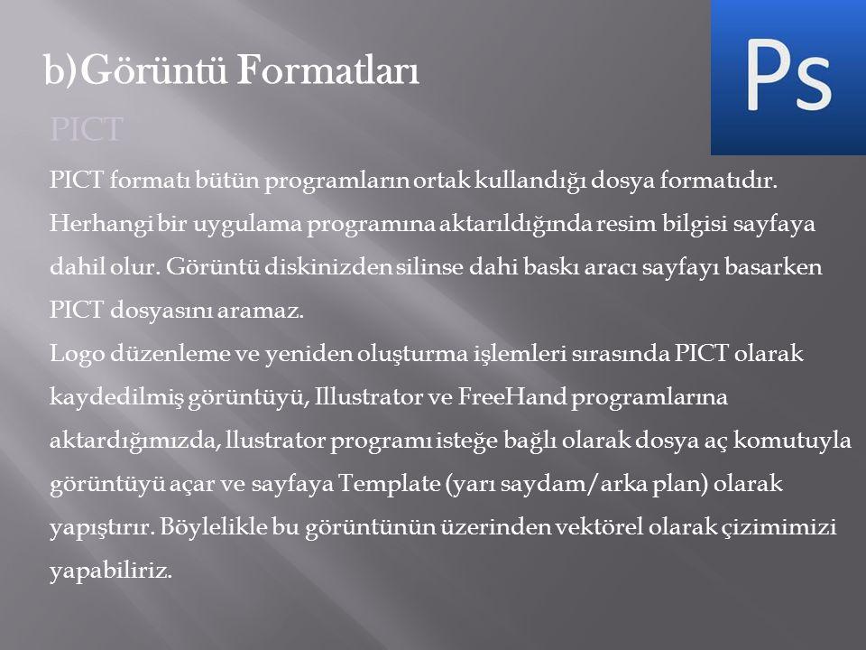 b)Görüntü Formatları PICT PICT formatı bütün programların ortak kullandığı dosya formatıdır. Herhangi bir uygulama programına aktarıldığında resim bil