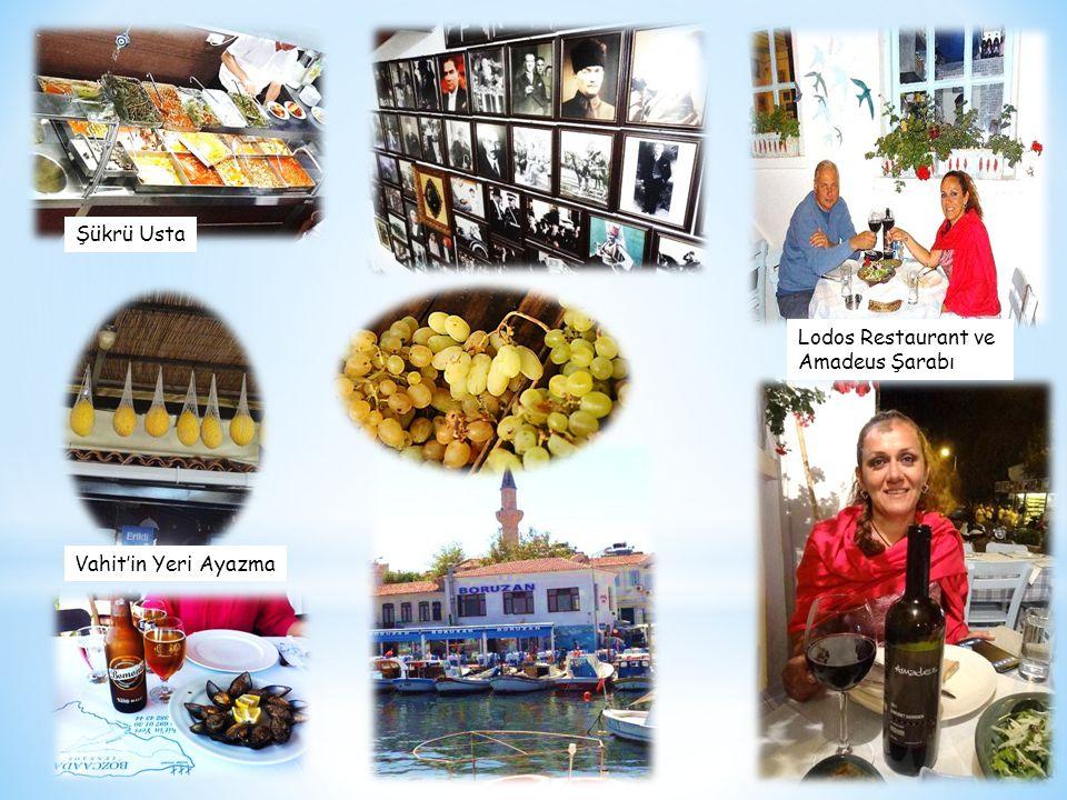 Lodos Restaurant ve Amadeus Şarabı Şükrü Usta Vahit'in Yeri Ayazma