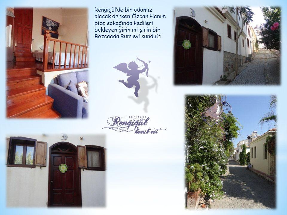 Rengigül'de bir odamız olacak derken Özcan Hanım bize sokağında kedileri bekleyen şirin mi şirin bir Bozcaada Rum evi sundu 
