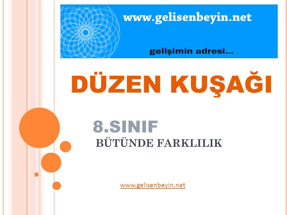 DÜZEN KUŞAĞI 8.SINIF BÜTÜNDE FARKLILIK www.gelisenbeyin.net