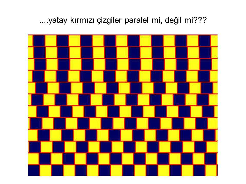 Ne görüyorsun?Bir spiral mi yoksa daireler mi?.