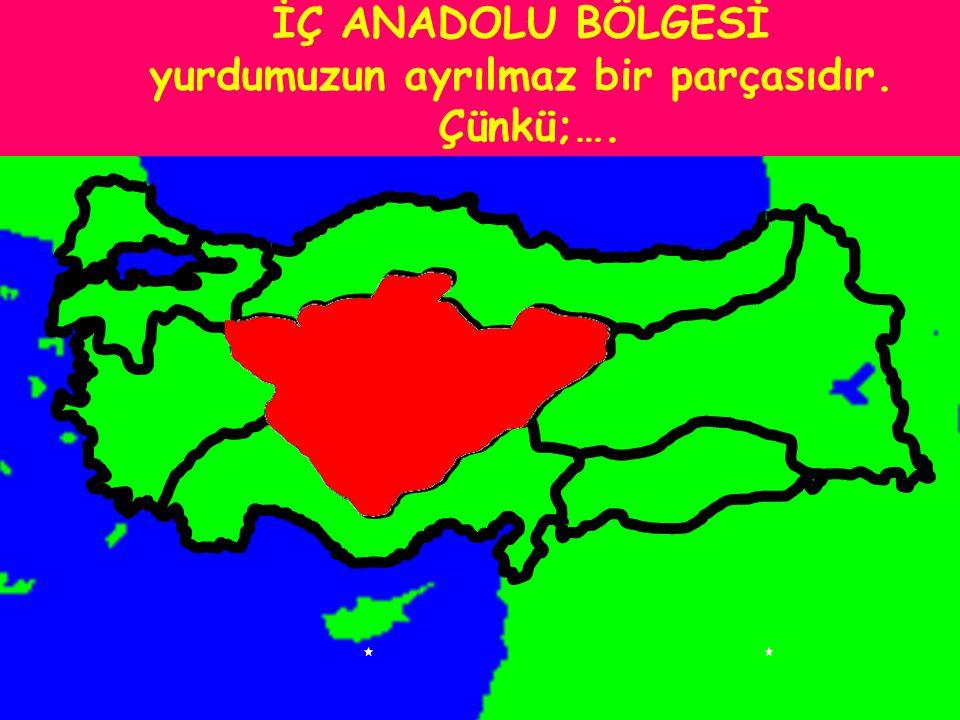 EGE BÖLGESİ