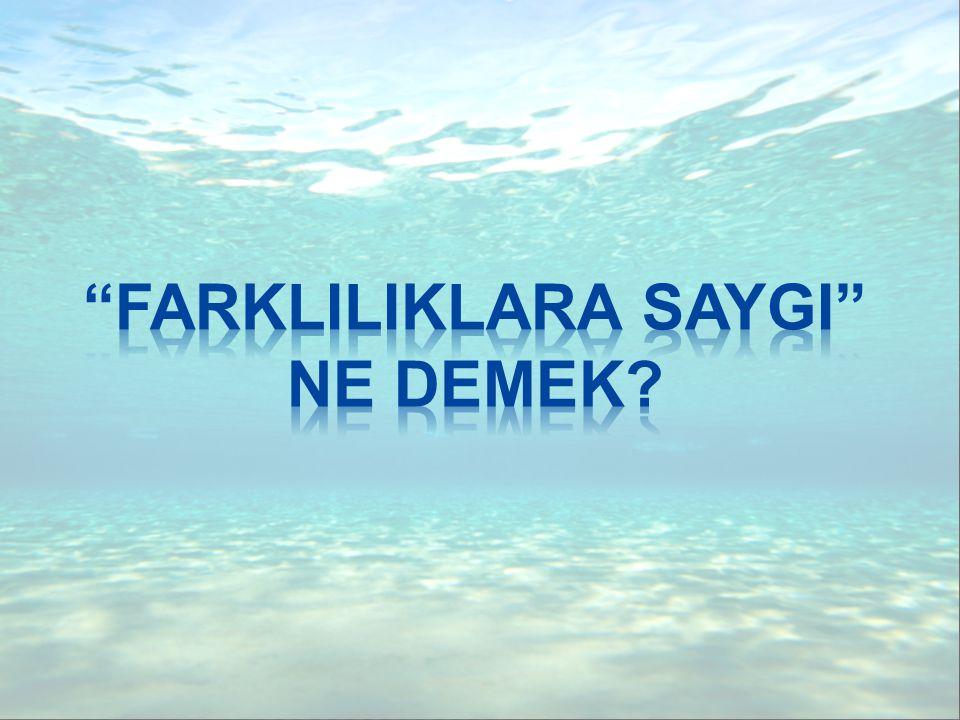 FARKLILIK...