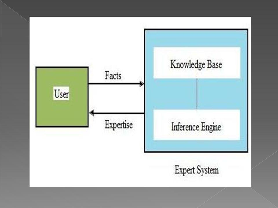  Tasarlanmış bir uzman sistemde algoritma yoktur.Her zaman bilgiye dayalı işlem yapılır.Bilgi tabanından bilgi çağırılır,işlem yapılıp arama gerçekleştikten sonra sonuca varılıp bilgi dahilinde açıklaması yapılır.Daha önceden tasarlanmış bir akış diyagramları algoritmaları yoktur.ihtiyacı olduğu bilgiye,ulaşır kullanılabilir.