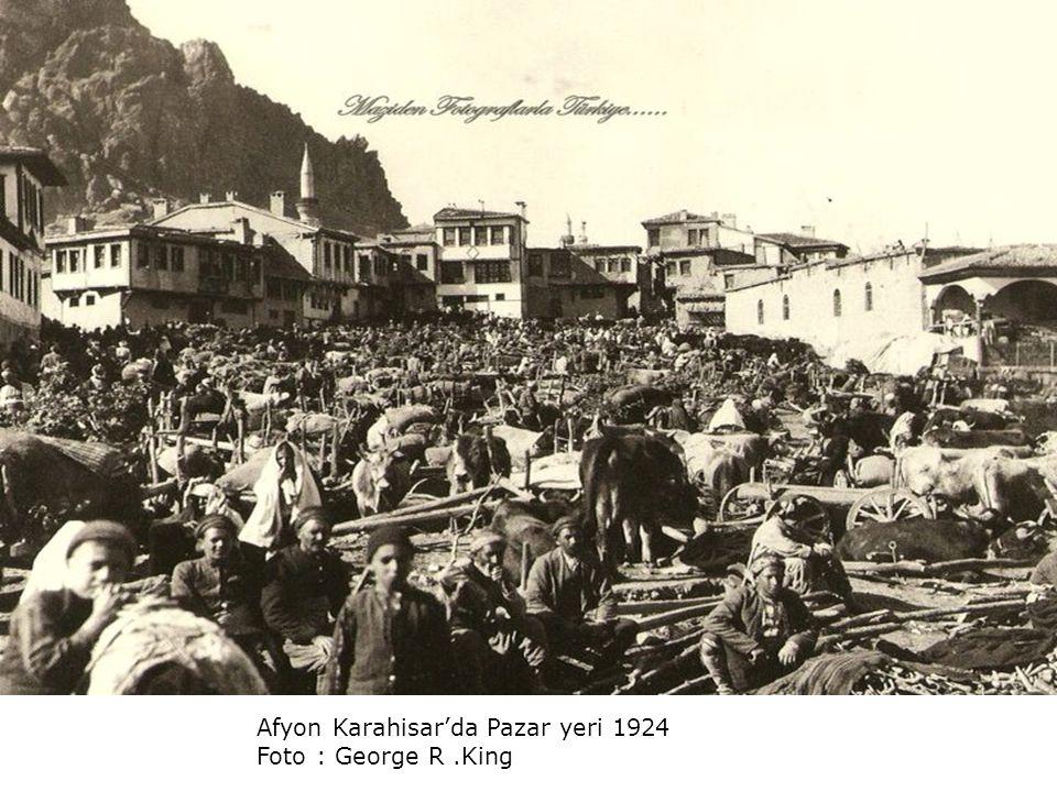 Kilikya'da bir şekerkamışı tarlası.. 1922..