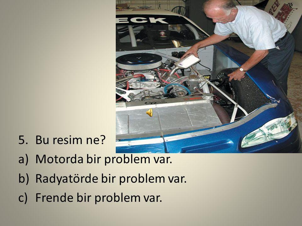 4.Hangi resim 'Radyatörde problem var'? ab