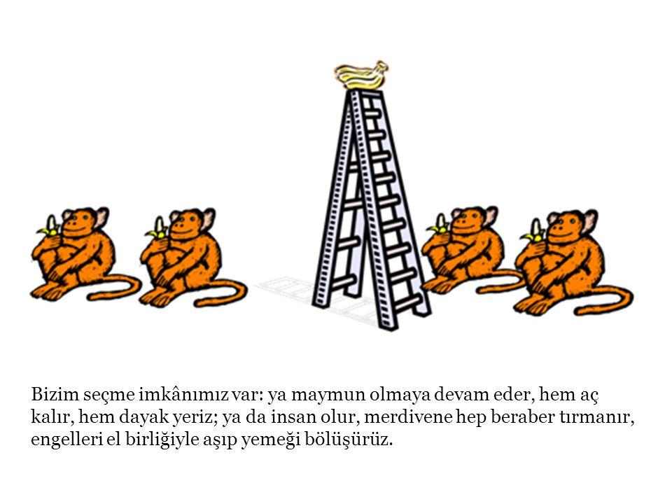 Bizim seçme imkânımız var: ya maymun olmaya devam eder, hem aç kalır, hem dayak yeriz; ya da insan olur, merdivene hep beraber tırmanır, engelleri el