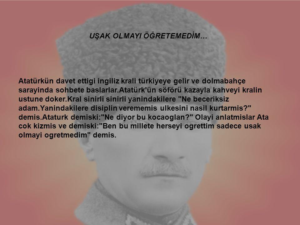 Atatürkün davet ettigi ingiliz krali türkiyeye gelir ve dolmabahçe sarayinda sohbete baslarlar.Atatürk'ün söförü kazayla kahveyi kralin ustune doker.K