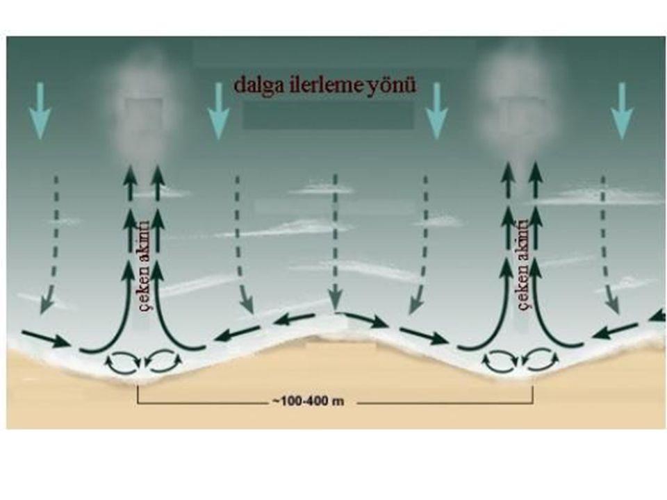 •Oysa en iyi yüzücüler bile rip akıntılarının hızı olan saniyede 1-2 metre yüzemez.