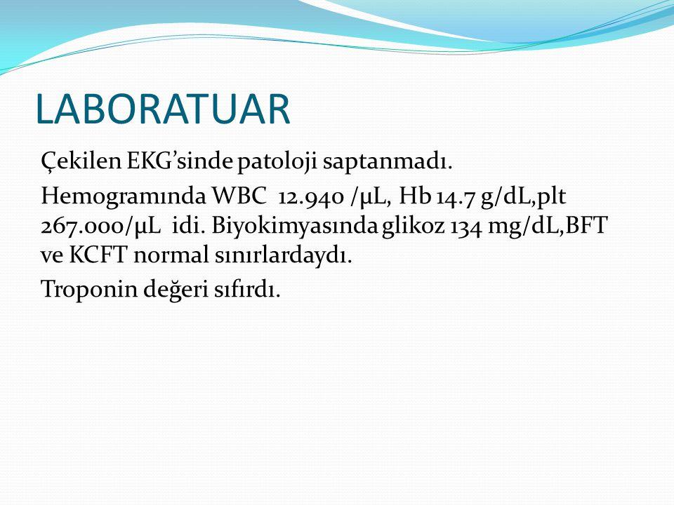 LABORATUAR Çekilen EKG'sinde patoloji saptanmadı. Hemogramında WBC 12.940 /µL, Hb 14.7 g/dL,plt 267.000/µL idi. Biyokimyasında glikoz 134 mg/dL,BFT ve
